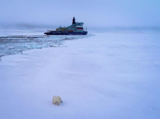 Новый российский атомный ледокол достиг Северного полюса