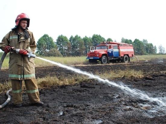 Очередной лесной пожар произошел в Пучежском районе