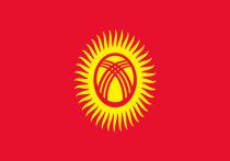 Наблюдатели СНГ одобрили парламентские выборы в Киргизии