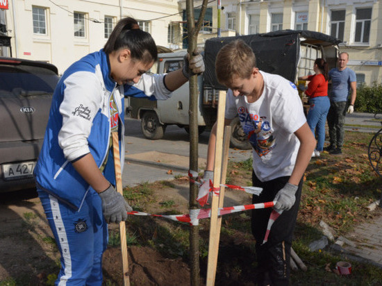 В Иванове появились новые деревья от Ботанического сада и «Малинок»