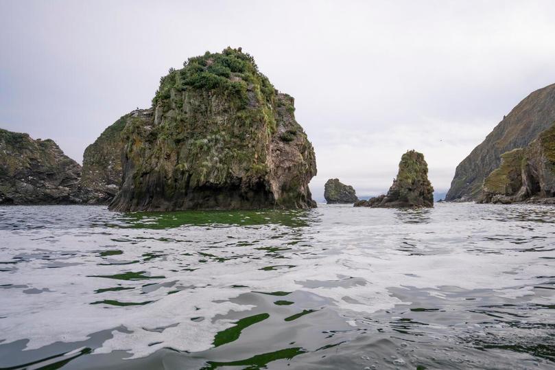 Экологическая катастрофа на Камчатке угрожает объекту ЮНЕСКО