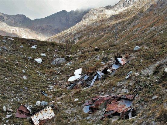 В Тульской области несколько участков завалили отходами