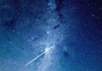 Конференция по астробиологии началась в Пущино