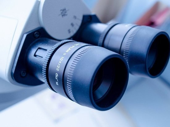 Исследование позволяет быстро выявить особые - тучные - клетки, которые задействованы в развитии воспалительного процесса