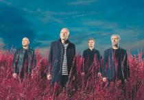 В ковидном музыкальном сезоне участники «Мегаполиса» стали чуть ли не единственными артистами, которые представили не только новый альбом «Ноябрь», но и новое шоу
