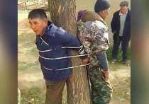 Жители села Кум Дөбө в Кочкорском районе привязали к дереву односельчанина и участкового