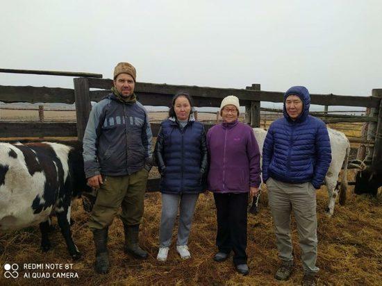 Фермер из Томпонского района будет разводить якутский скот