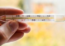 Вирусных инфекций в холодное время года «гуляет» огромное количество