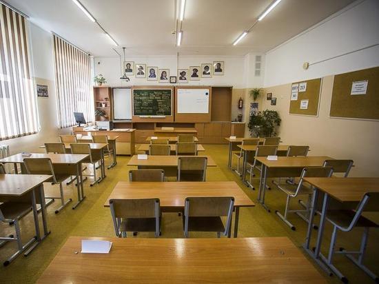 Депутат горсовета требует закрыть в Новосибирске школы на карантин