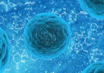 Ученые бьют тревогу с связи с новым опасным штаммом скарлатины