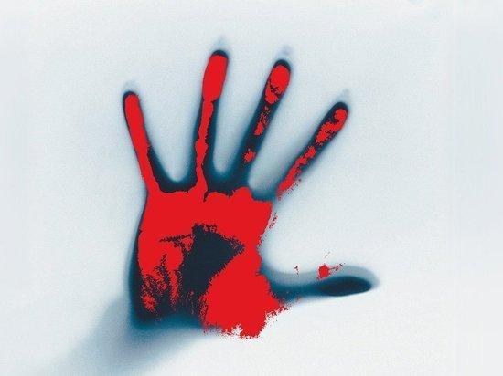 В Богородске мужчина подозревается в убийстве матери