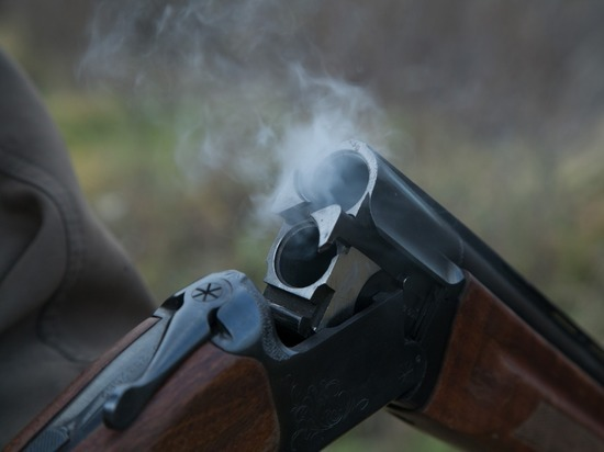 Драма в костромском лесу: незадачливый охотник выстрелил себе в ногу