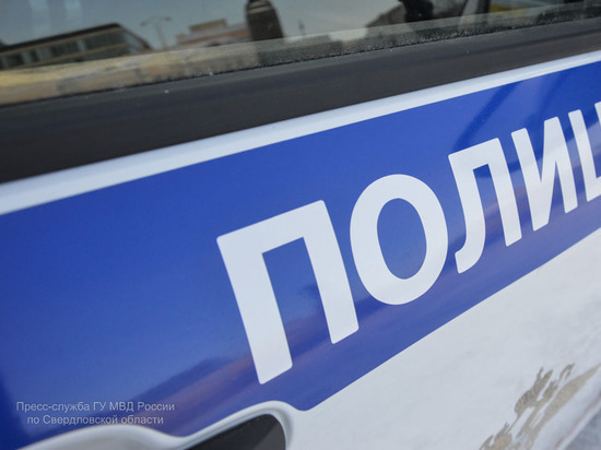В Екатеринбурге 11-летний подросток ограбил пенсионера на 200 тысяч рублей