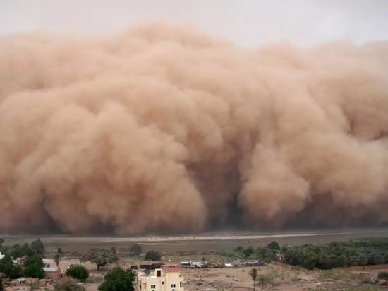 В Калмыкии сохранится сильный восточный ветер с пыльными бурями