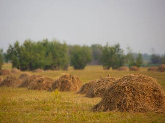 В Якутии заготовили резерв сена объемом 7420 тонн