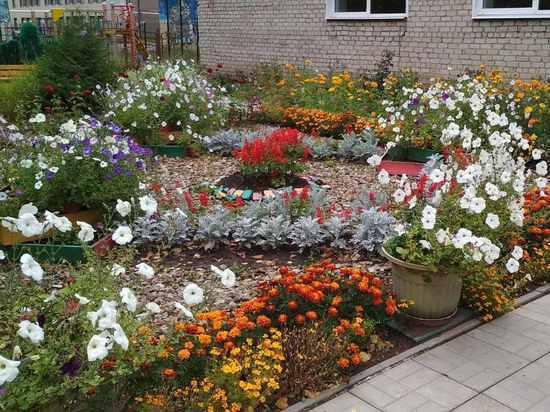 Стартовало народное голосование за участников конкурса «Украсим Родину садами»