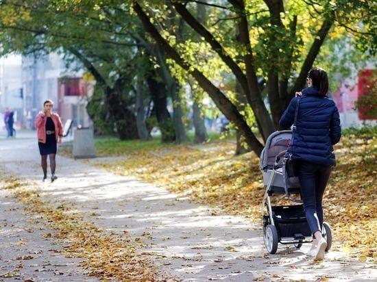 В РТ оставившую коляску с ребенком мать привлекут к ответственности