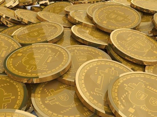 В ЯНАО женщина хотела купить биткоины и лишилась почти 500 тыс.