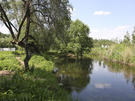 Московская область стала лучшей в стране по реализации «мусорной реформы»