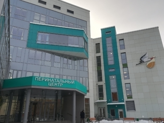 Медполисы новорожденным будут выдавать в перинатальном центре Пскова