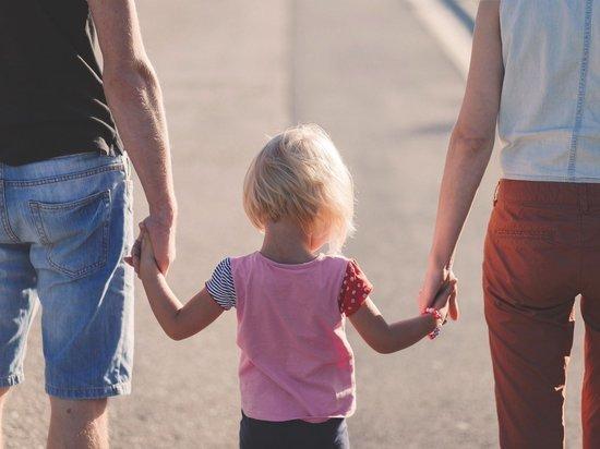 Депутат заявила, что «обкладывать» налогом нужно тех, кто сознательно отказывается заводить детей