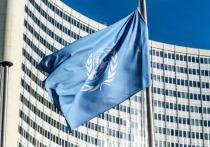 Узбекистан впервые стал членом Совета ООН по правам человека