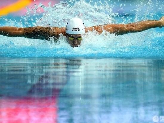 Калужские пловцы заняли почти весь пьедестал Чемпионата ЦФО