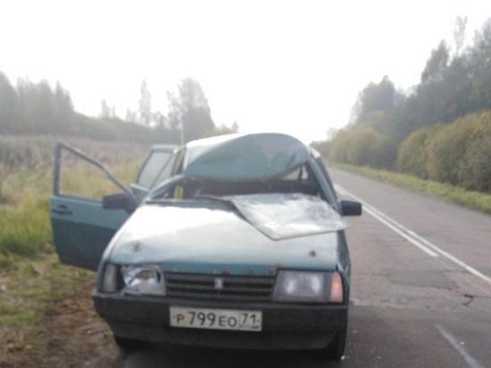 Внезапно выбежавший на дорогу в Духовщинском районе лось стал причиной тяжелой аварии