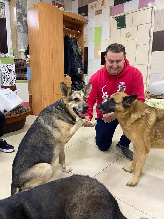 Смоленские волонтеры сформируют специальный отряд для помощи приюту для собак