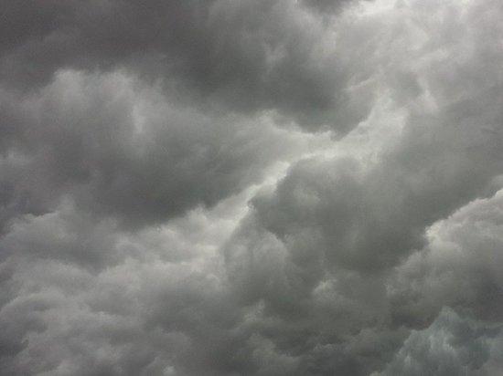 +11 градусов прогнозируют синоптики в Псковской области 15 октября