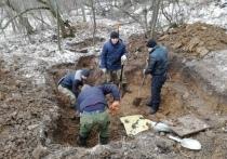 Поисковики нашли родственников солдата, погибшего под Тулой