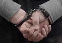 Писатель задержан сотрудниками правоохранительных органов по подозрению в педофилии