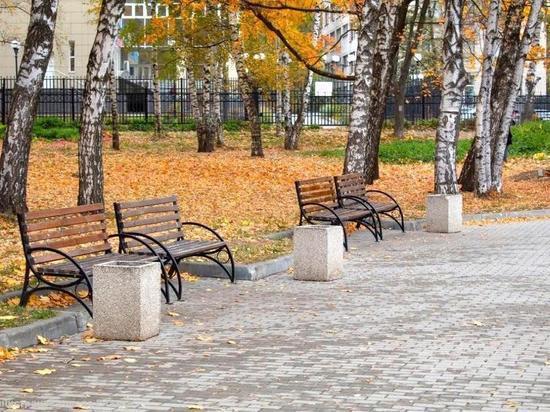 За отсутствие урн в Рязани оштрафовали более 100 нарушителей