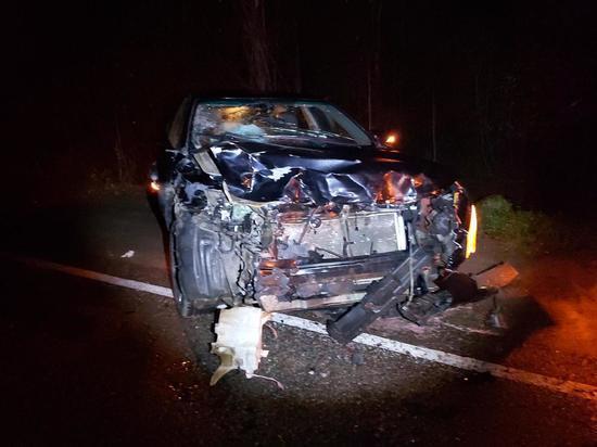 В Костромской области пенсионер на «Тойоте» сбил корову, пострадала пассажирка