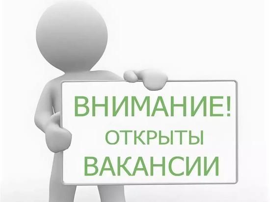 В сентябре в Ярославской области было открыто на 13% больше вакансий, чем годом ранее