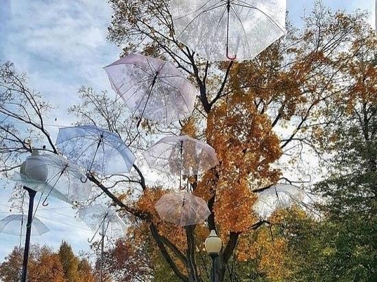 Погода в Рязанской области 16 октября