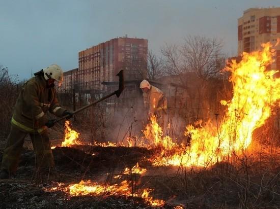 В Рязани загорелась трава на территории кладбища
