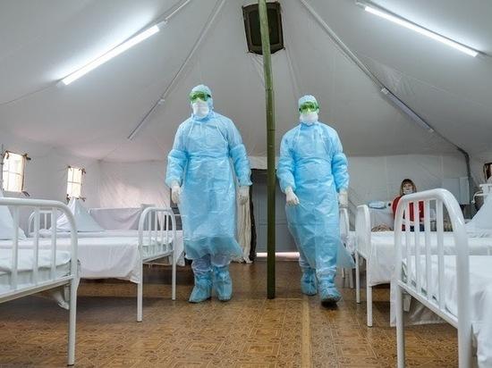 В Волгограде коронавирус за сутки обнаружили у 99 жителей