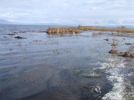 В Бурятии рассказали о неблагополучной ситуации на архипелаге Ярки