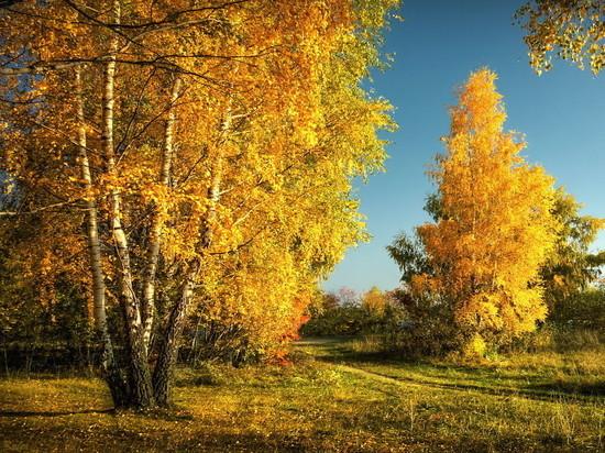 Синоптики обещают резкое потепление в Забайкалье