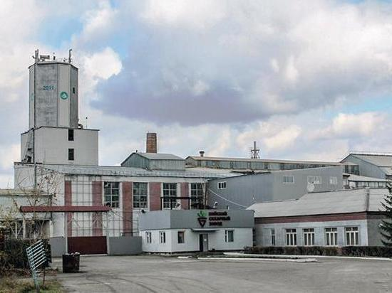 Новосибирские инвесторы заново отстроят сахарный завод в Бийске