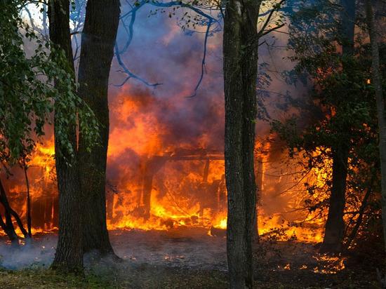 Пожар в Донецке унес жизнь мужчины
