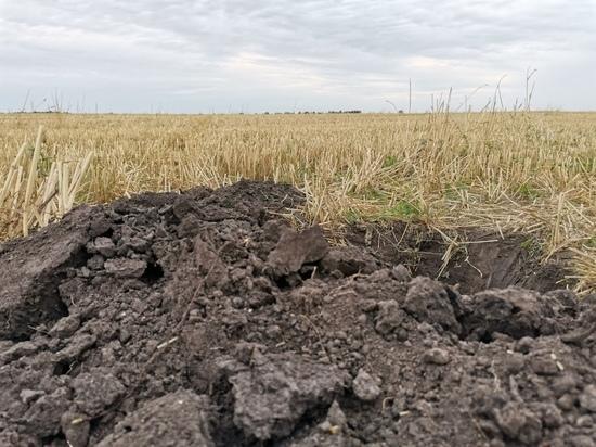 На земельном участке в 16 га под Ясногорском нашли много численные нарушения