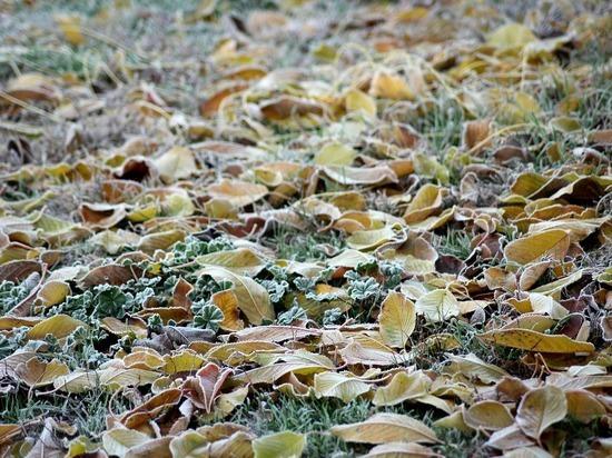Погода в Рязанской области 17 октября