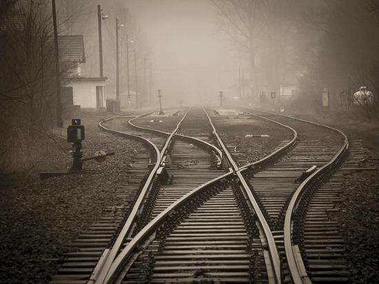 Поезд сбил дикое животное на железнодорожных путях в Карелии