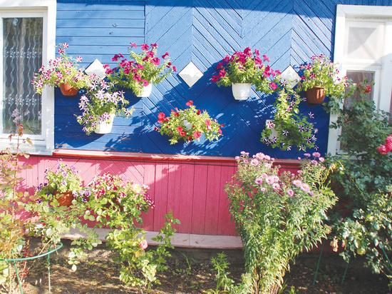 Газета в Тверской области рассказала о необычном доме с цветами
