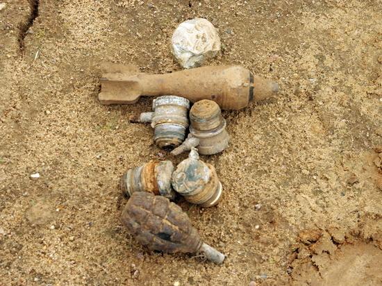 В Смоленской области нашли девять боеприпасов времен войны в пятницу