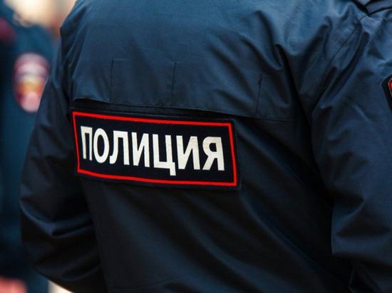 В Челябинской области полицейский применил табельное оружие при задержании воров