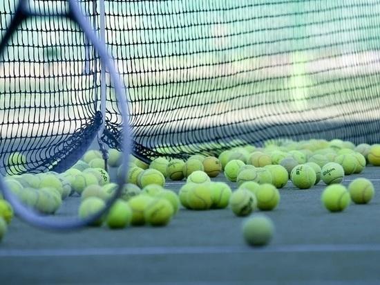 Шапша предложил восстановить теннисные корты в сквере Волкова