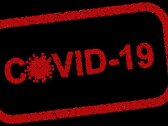За последние сутки в Черноземье выявлено 668 случае заражения COVID-19